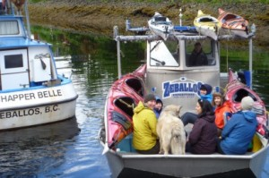 Zeballos Expeditions  water taxi