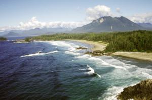 Vargas island